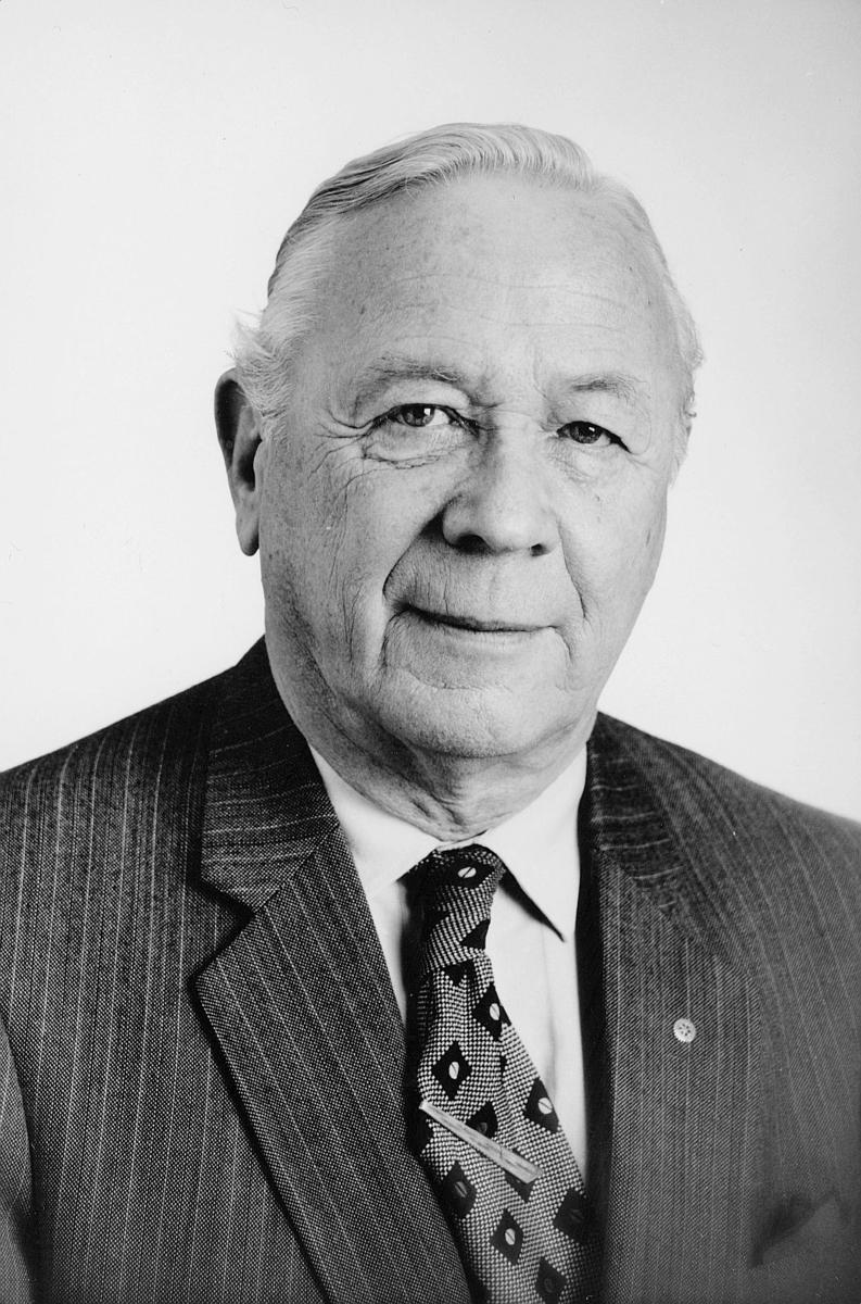 portrett, mann, distriktssjef Ole Johan Brock