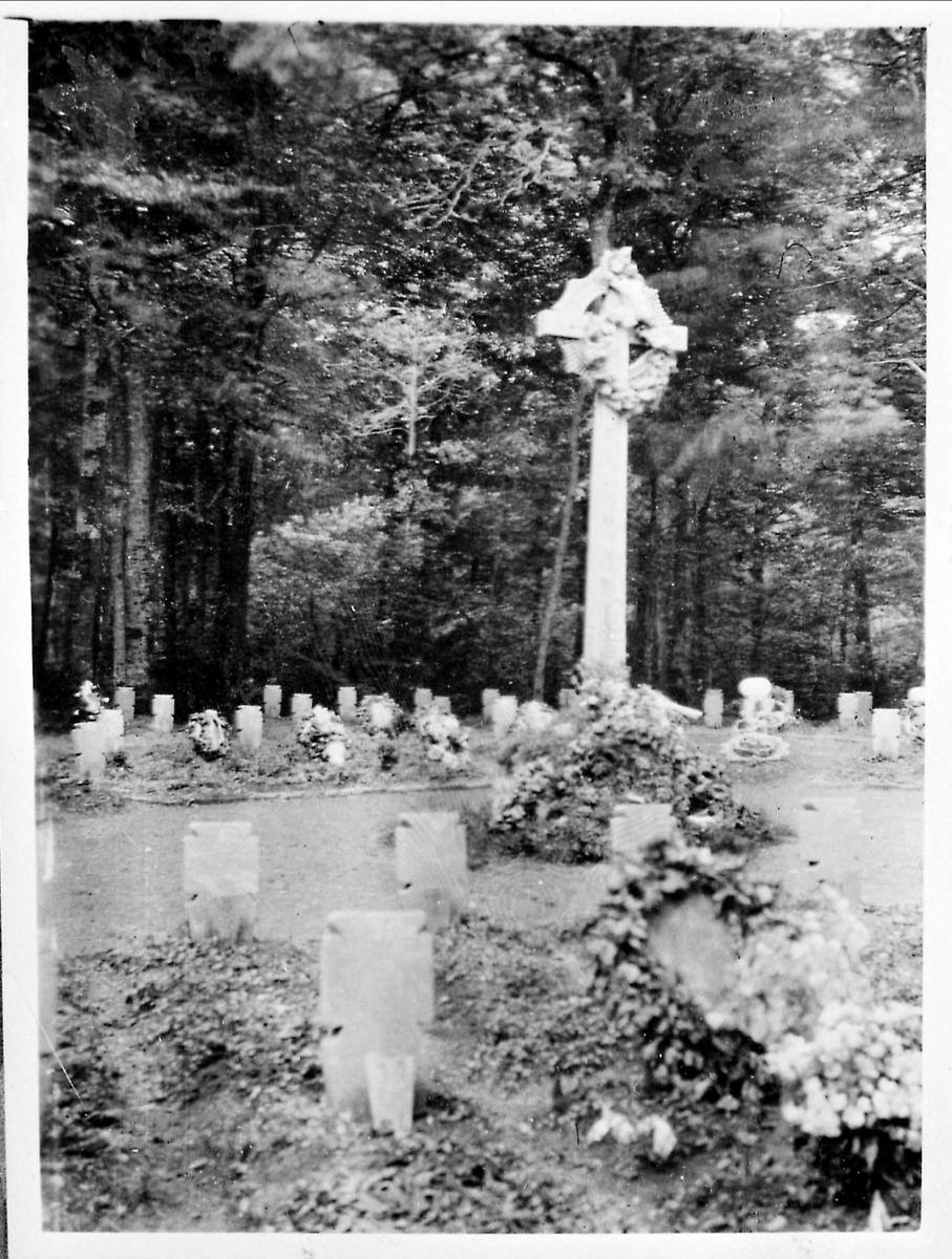 Kirkegård, Belgia