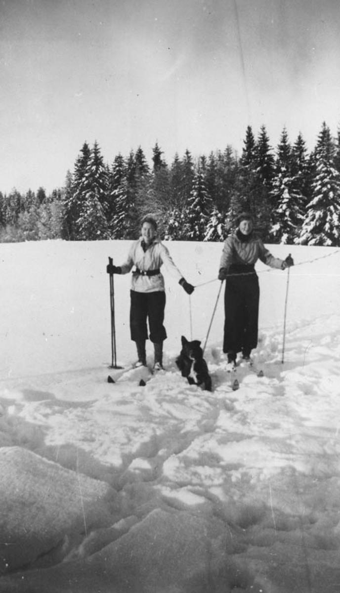 Anne Ødegård og Liv Gjerde. (Ski mot skogen.)