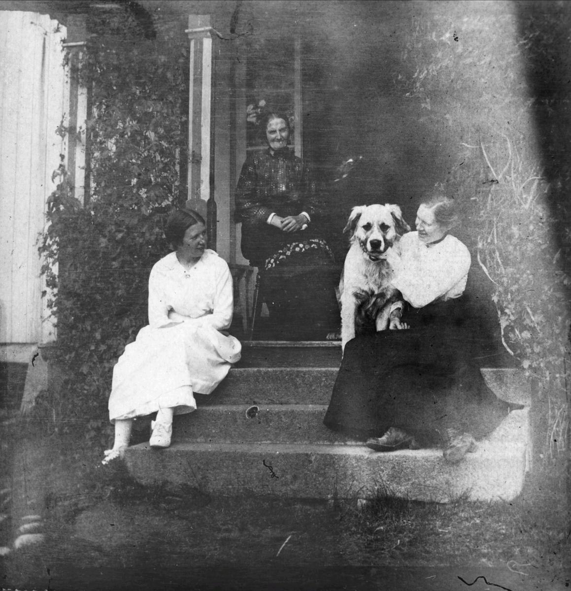 Inngangen til hovedhuset på Skisjordet. Tre kvinner og en hund på trappen.