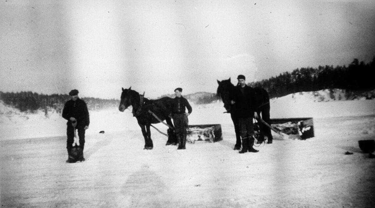 Tre menn, to hester, to kjelker, sne