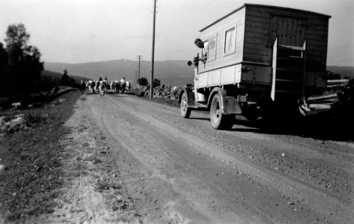 På tur til landsskytterstevnet i Steinkjer 1953.