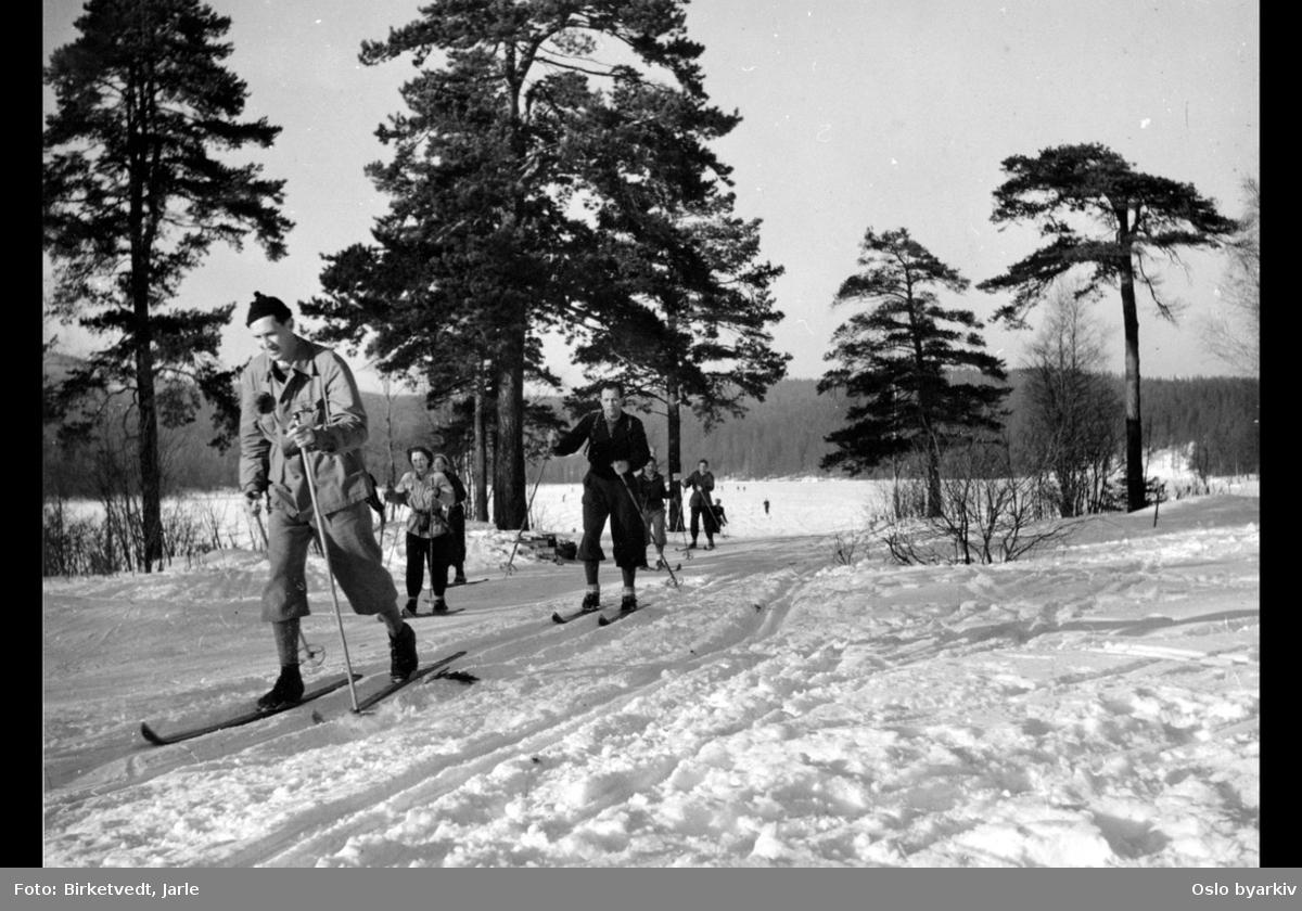 Skiløpere over islagt Sognsvann
