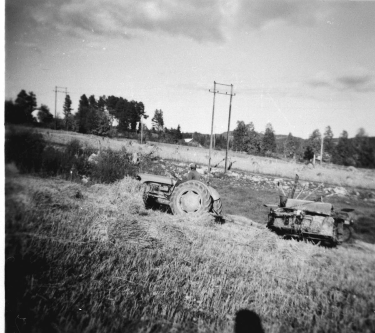 Skuronn på Skavlien, Ringsaker. Mann på Fordson traktor med selvbinder.