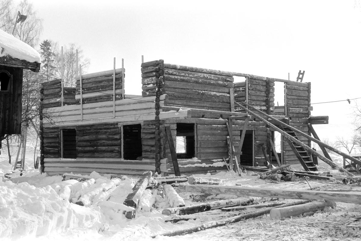 Grimsrudbygningen fra Helgøya restaureres på Hedmarksmuseet. Museumshåndverkere i arbeid. Utskifting av tømmer.