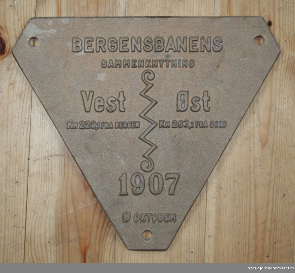 Skilt fra Bergensbanens sammenknytning ved Ustaoset i 1907 : rekonstruksjon