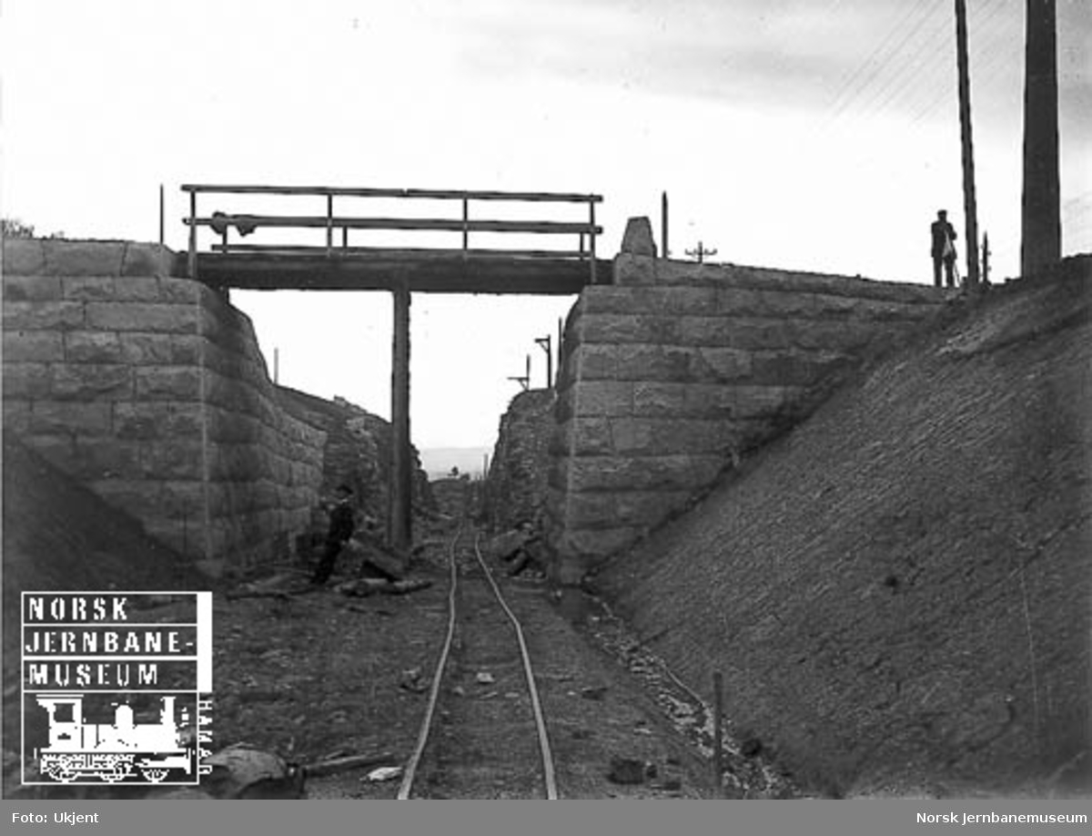 Undergang for godssporet ved Nygård