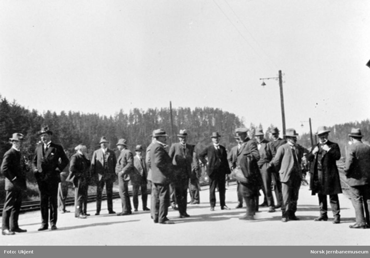Stortingets jernbanekomité, Harald Holte m.fl. på Hønefoss stasjon