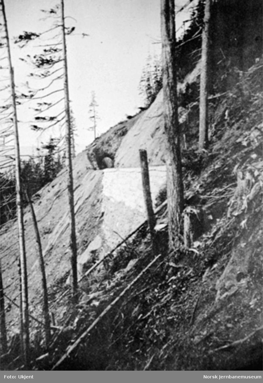 Parti fra linjen i Drøiliene - med en av tunnelene - to mann står på sporet