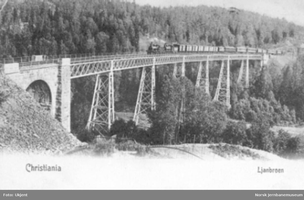 Ljansviadukten med et langt blandet tog trukket av to damplokomotiver av type 9 og 10