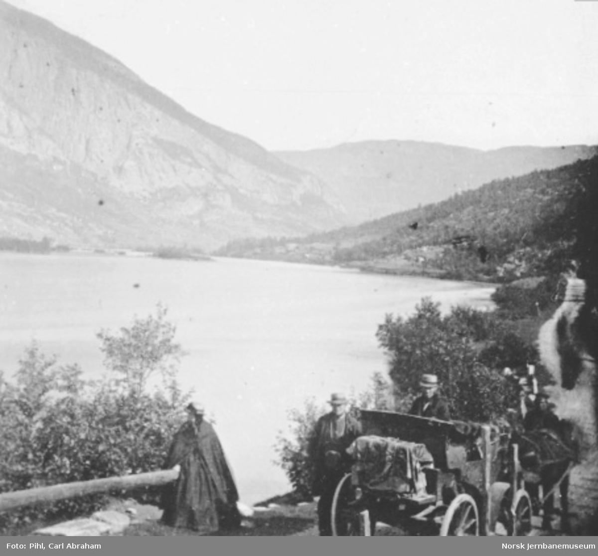 Hest med vogn på landevegen ved Bredebygden, med utsikt mot Kringen