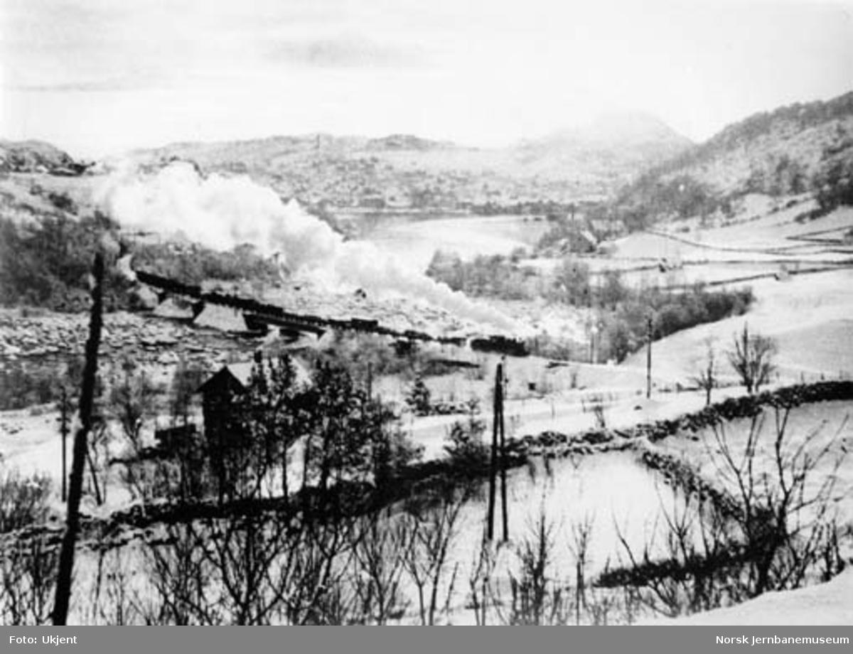 Godstog trukket av smalspordamplokomotiv type XXIII ved Eie