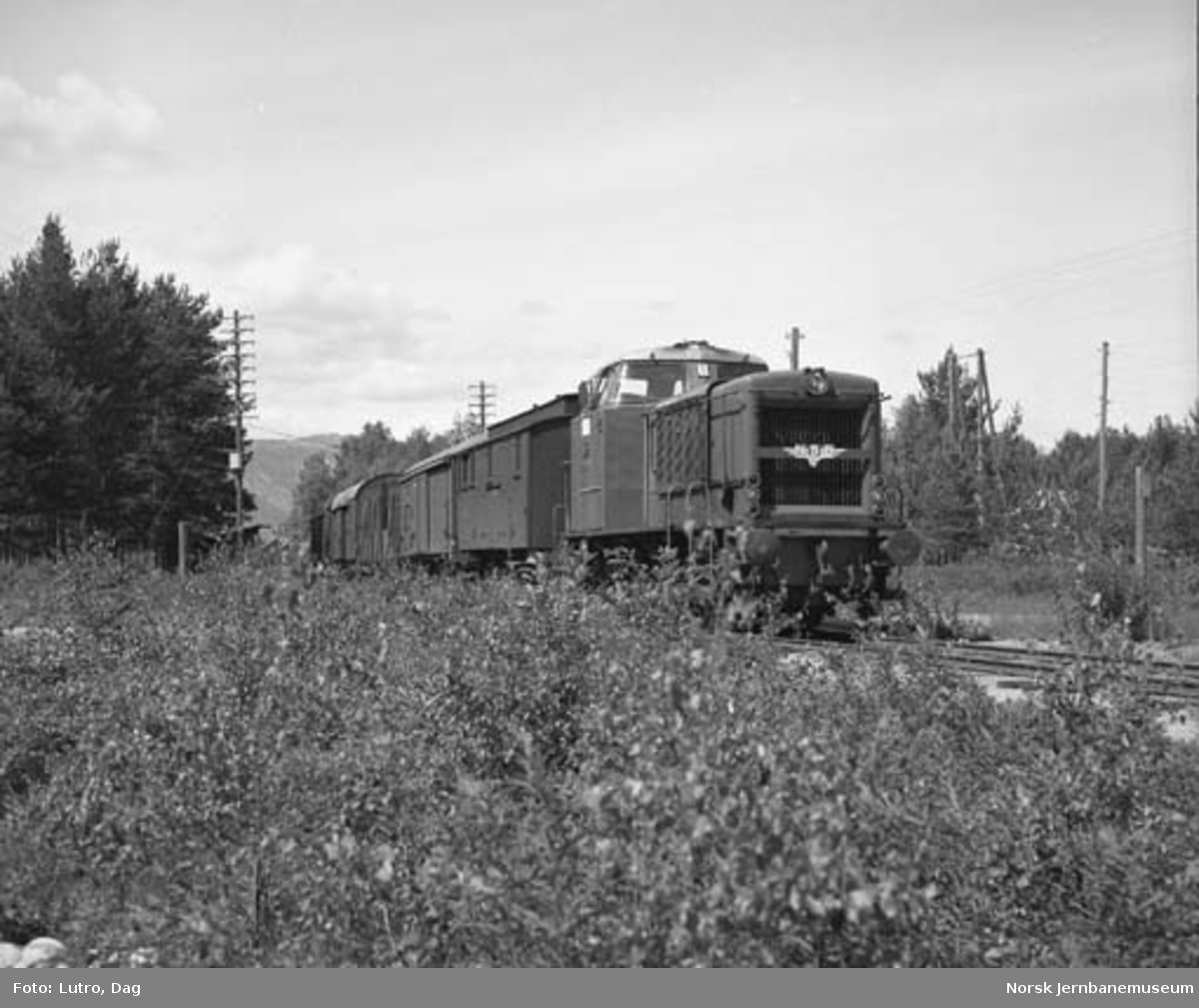 Di 2 nr. 809 med godstog på Treungenbanen