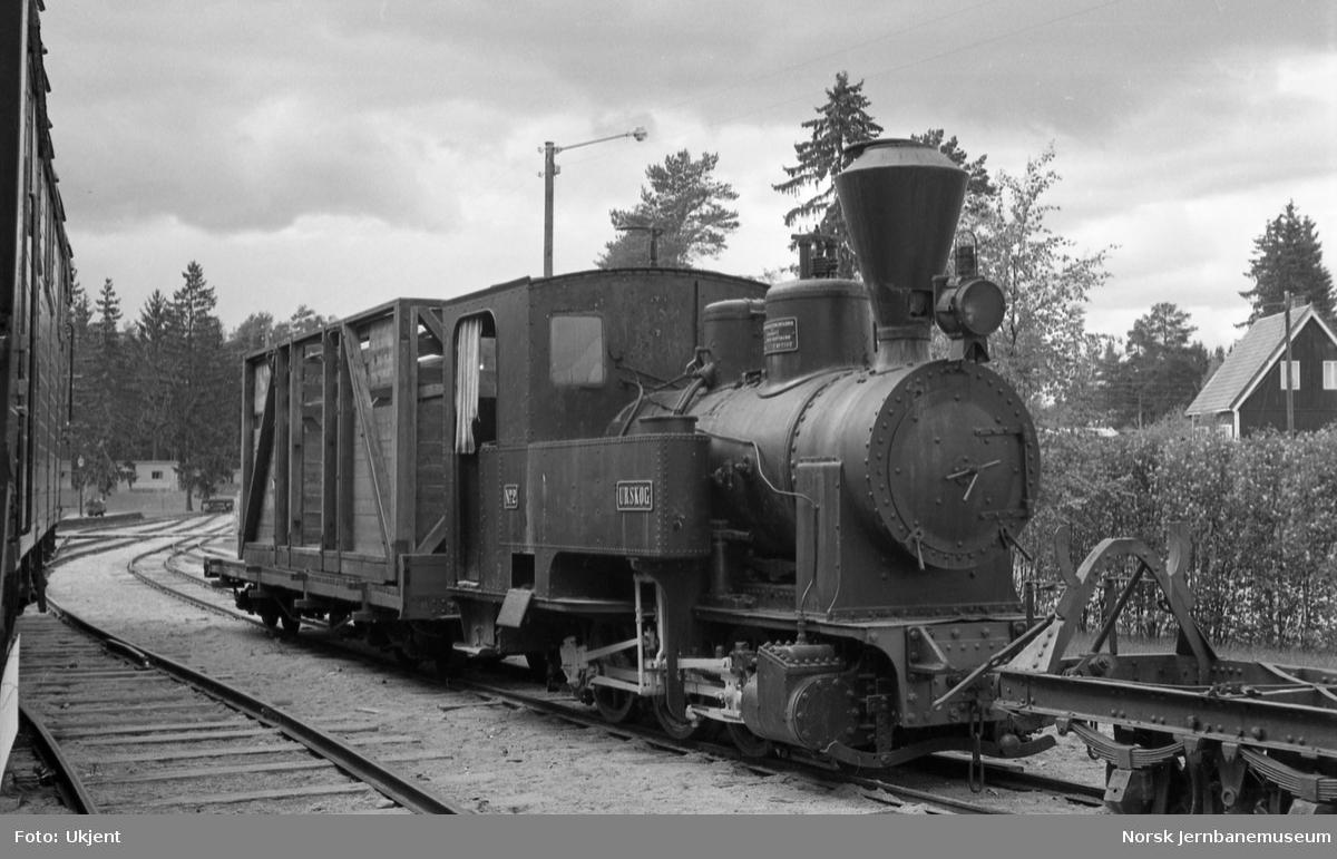 """Jernbanemuseet med damplokomotivet """"Urskog"""""""